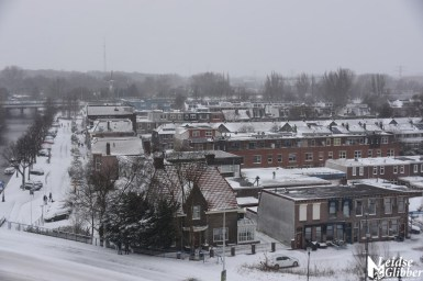 sneeuw (48)