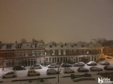 sneeuw (8)