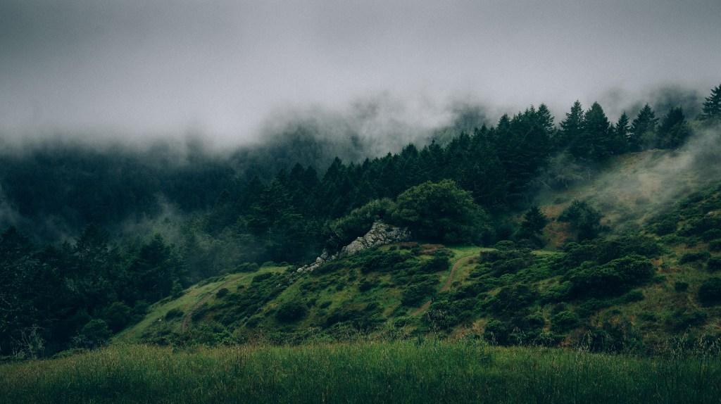 foggy valley unsplash