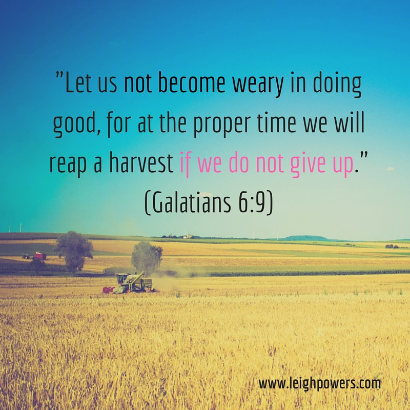 -Let us not become weary in doing good, for at the proper time we will reap a harvest if we do not give up- (Galatians 6-9).