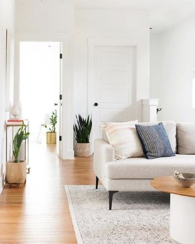 Living room with sofa on large rug