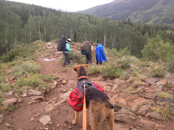 Starting out in the rain towards Judd Falls