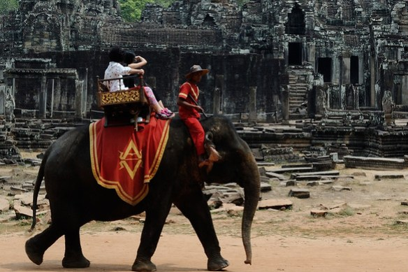 Looks like a nice pic, but if you look closely you can see the iron hook the mahout carries to keep the elephant in line.  An elephant died here from heat exhaustion not long after this :(  Elephant riding is a horrible practice.