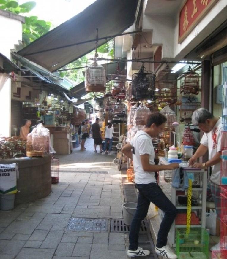 Bird Market in Kowloon, Hong Kong. (Photo: Ana Ribeiro)