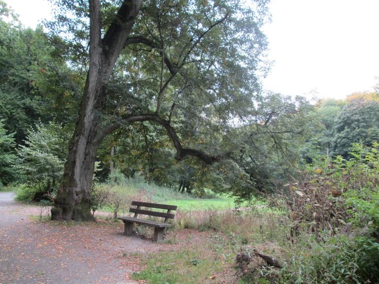 """The ideal bench."" (Photo: Lito Seizani)"