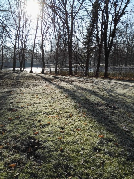 Taking in the frozen green sights of Leipzig. (Photo by Chrissy Orlowski)