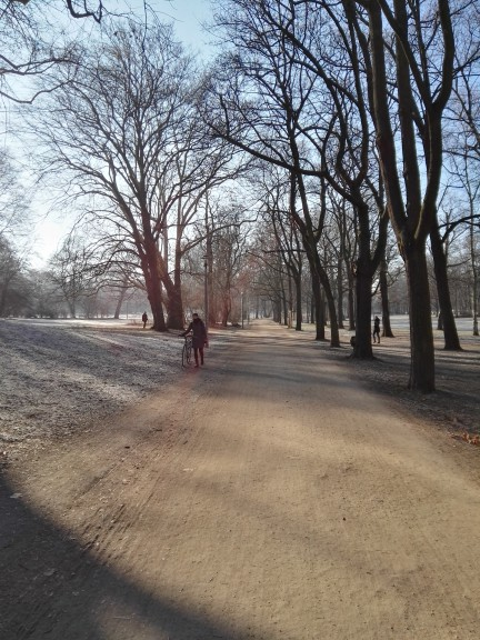 Strolling through winter. (Photo by Chrissy Orlowski)