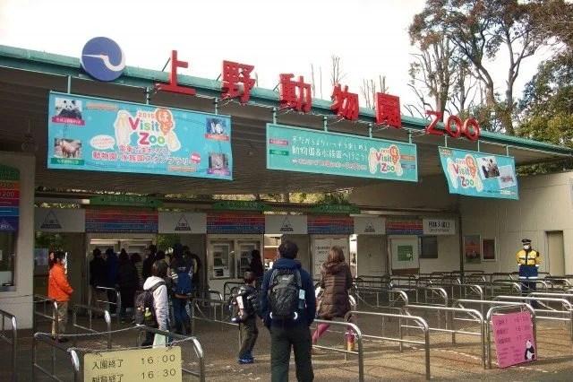 【上野動物園アクセス】電車&上野(根津)駅から徒歩!車での行き方10選