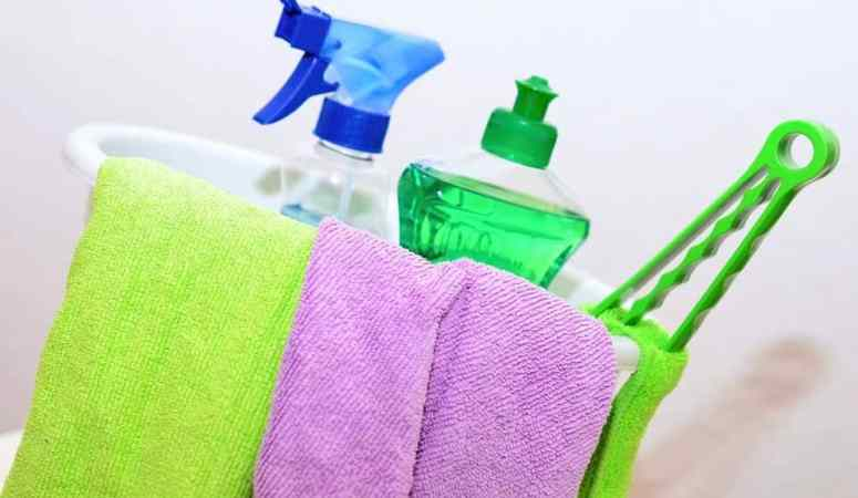 How To Speed Clean- Easy Ways To Make Your House Neat In Minutes