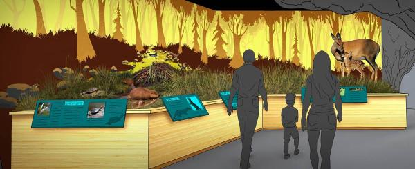 Alabama's Cook Natural Science Museum moving to new US$17m ...