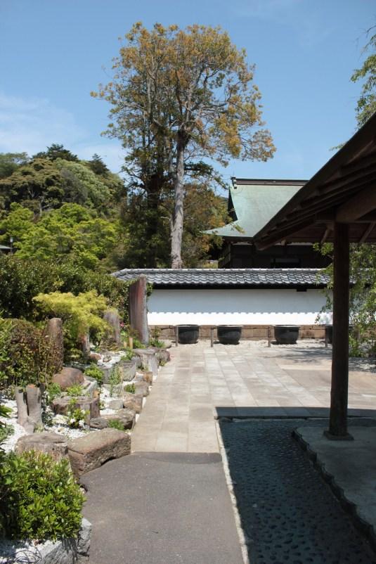 Kencho-ji 7
