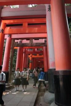 L'entrée des torii, les portails traditionnels japonais