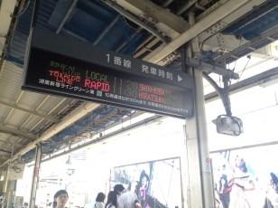 Quai de la ligne Shonan Shinjuku
