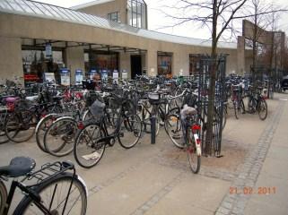 Des petits, des grands, des beaux, des vieux ... des vélos partout !