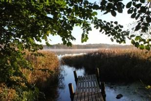Lac près du campus