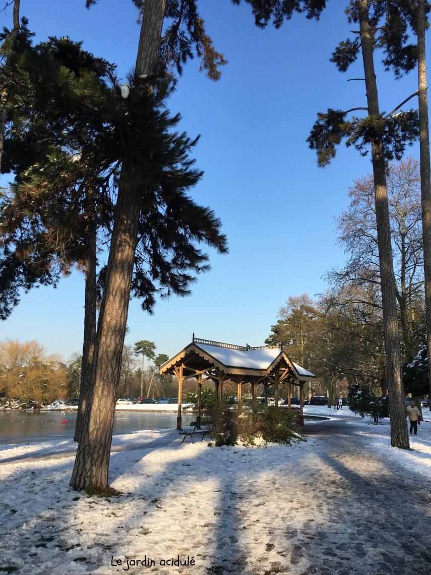 Paris neige 30
