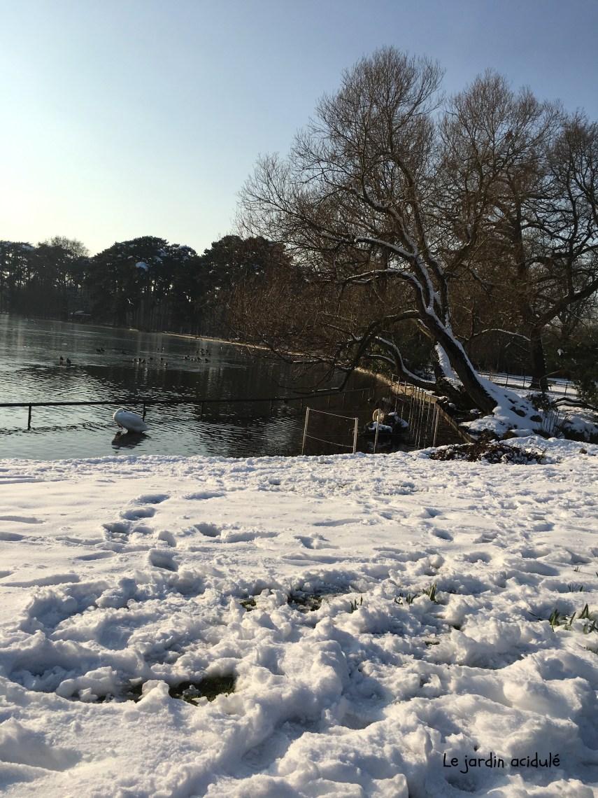 Paris neige 32