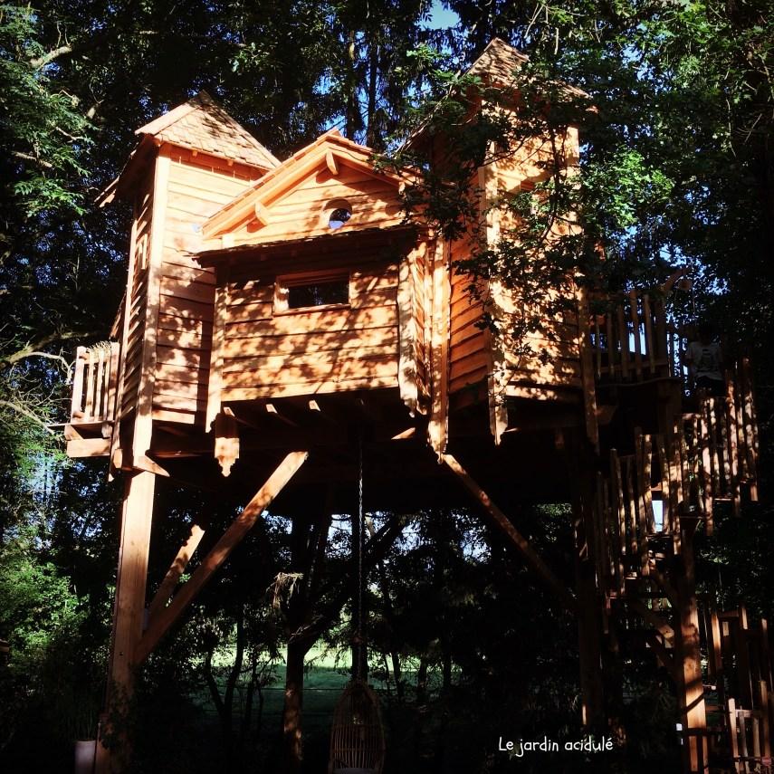 Cabanes dans les arbres 1