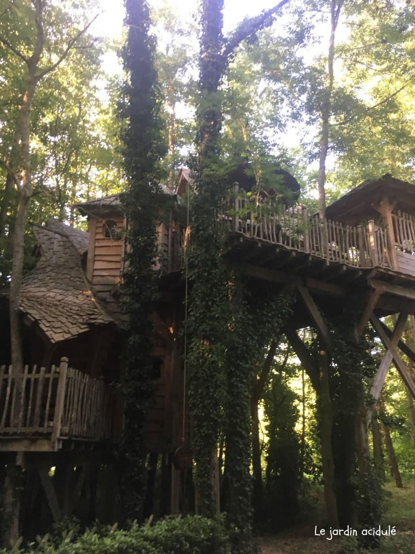 Cabanes dans les arbres2670.jpg