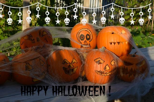 Pumpkins - citrouilles Halloween