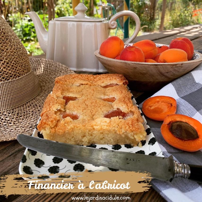 financier à l'abricot