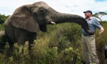 Lawrence a sauvé la faune contre les atrocités de l'homme