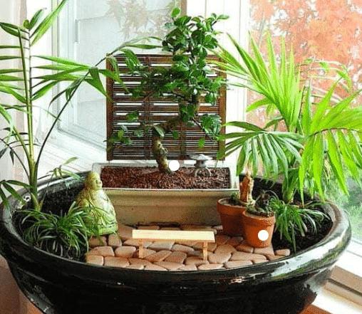 jardin japonais zen tout savoir sur