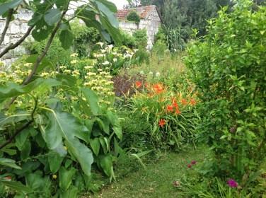 Hémérocalles, phlomis le jardin d'épices Laurent Lafaille