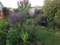 massifs d'été,2014, le jardin d'épices Laurent Lafaille