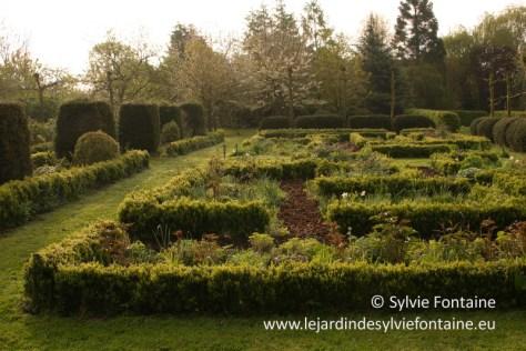 Une grande zone du jardin est structurée par des milliers de buis, aujourd'hui en mauvais état , photo 2012