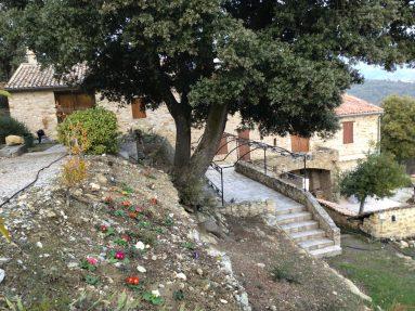 Le Jas de Belley vue d'extérieur avec des fleurs de saison chêne centenaire et treille fer forgé le Jas de Belley Montfort 04600 Alpes-de-Haute-Provence