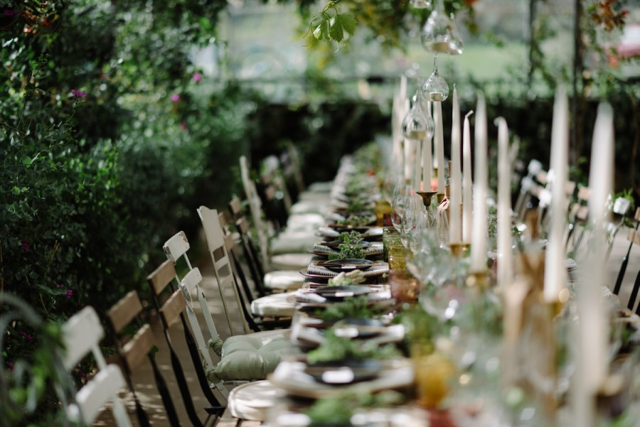 Knot and Pop wedding planning