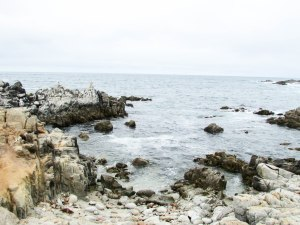 sea-road-montereybay-usa-westcoast-pacific
