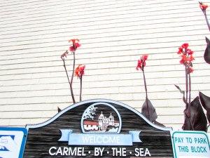 carmel-usa-westcoast-pacific-roadtrip