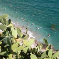 soleil mer et cactus