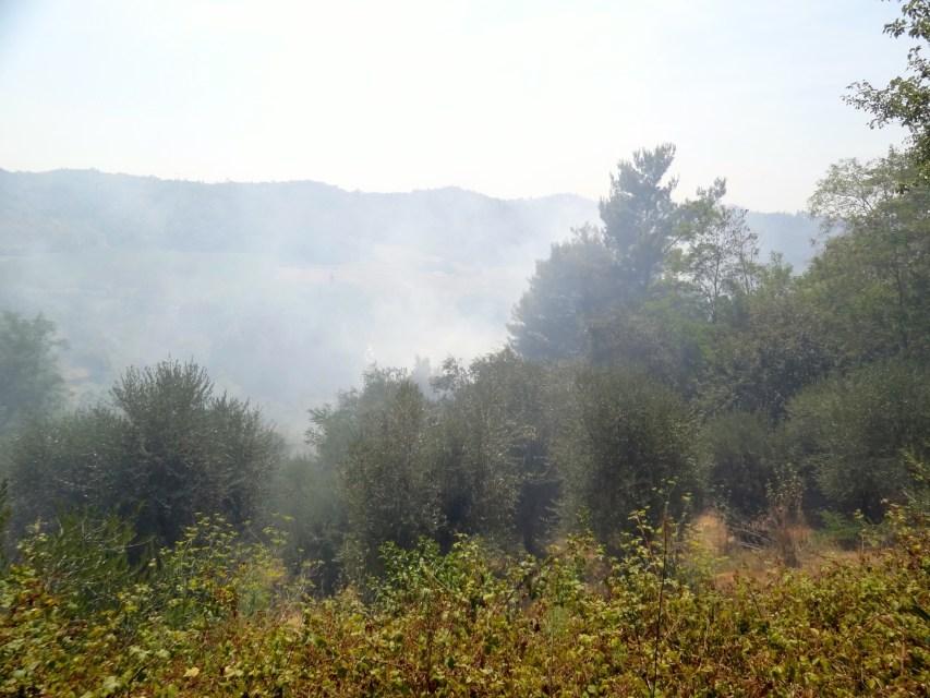 incendies toscane