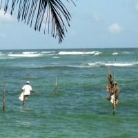 pêche sur poteau Sri Lanka