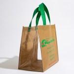 Fruit Picking Reusable Bag, transparent sides bag, packaging for fruit farm,
