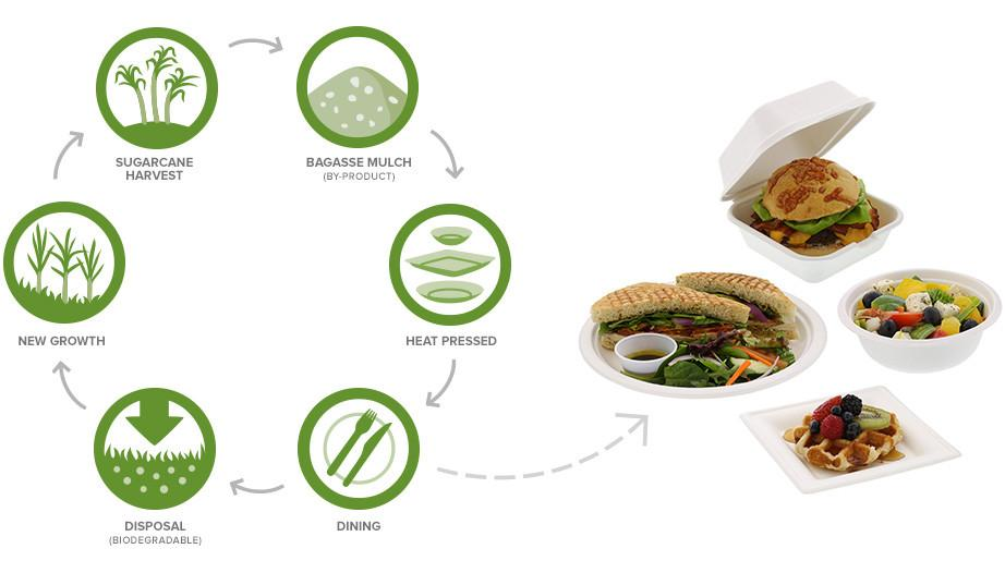 diagram showing how sugar cane packaging is made