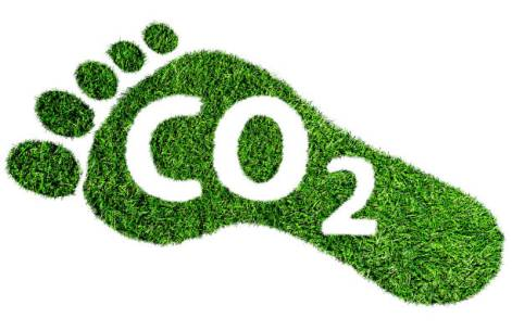 Illustration of a carbon footprint portraying sustainability