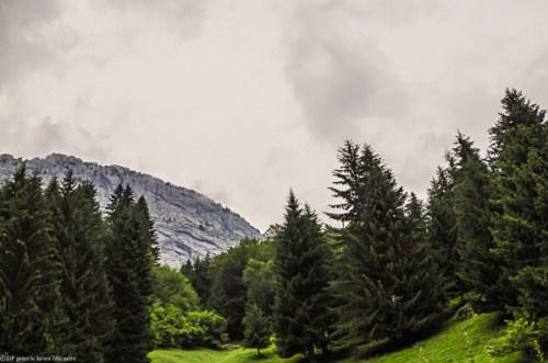 crêt Sapey-Haute-Savoie-280714-0309