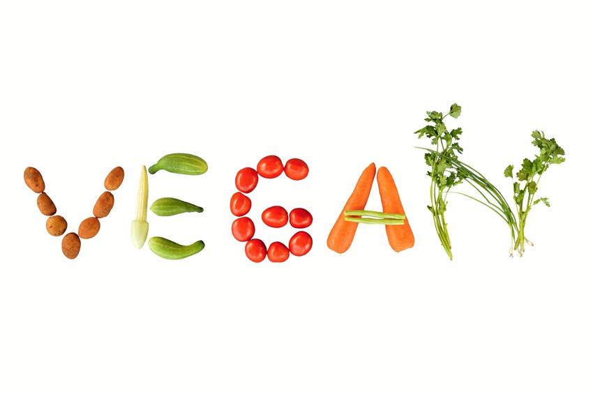 Vegan writing