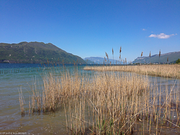 lac-Bourget-040516
