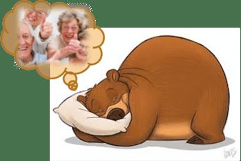 Why Hybernate