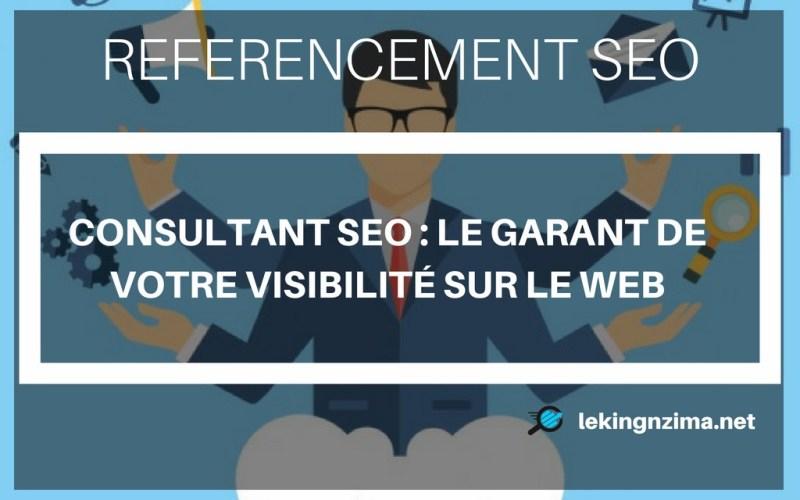 consultant-seo-garant-de-votre-visibilité-sur-le-web