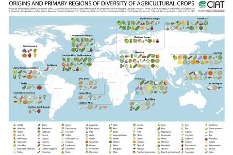 Une carte de la région d'origine des fruits et des légumes.