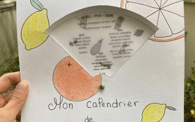 Tuto DIY : Fabrique un calendrier rotatif des fruits et légumes de saison