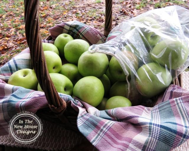 R A Apple Basket