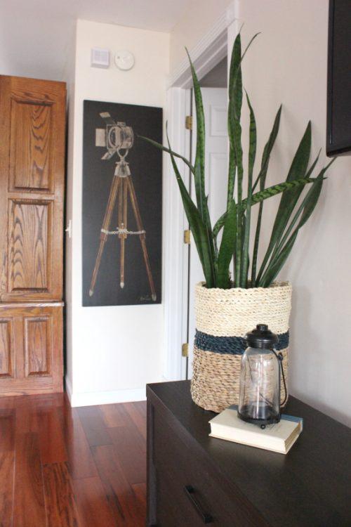 Use baskets to dress up cheap plant pots