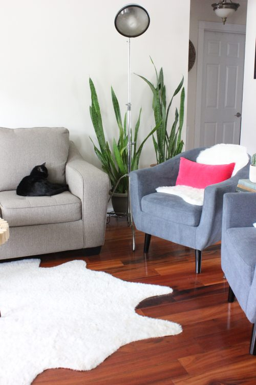Clean Simple Minimal Living Room with a Pop of Color